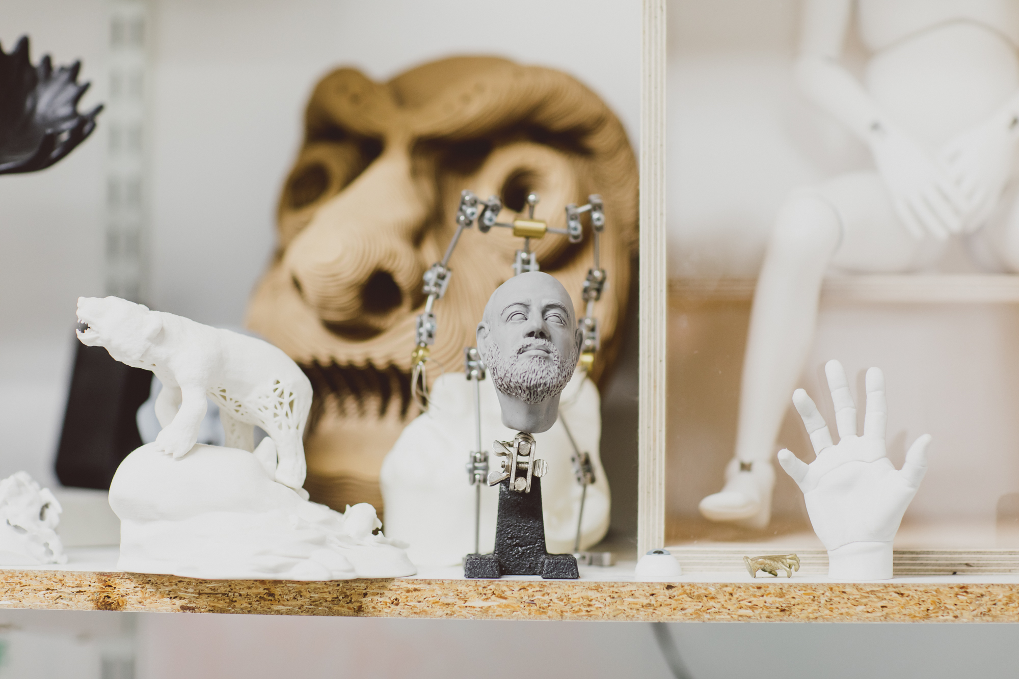 Models of a polar bear, mask, man and hand in 3D workshop